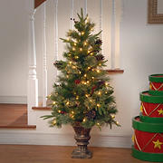 National Tree Company 4' Colonial Entrance Tree - Clear