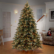 National Tree Company 7.5' Poly-Frosted Colorado Spruce Tree - Clear