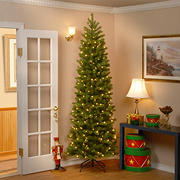 National Tree Company 7.5' Slim Down Swept Douglas Fir Tree - Clear