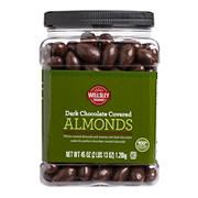 Wellsley Farms Dark Chocolate Covered Almonds, 45 oz.
