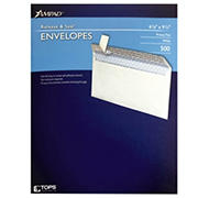 Ampad #10 Peel and Seal Envelopes, 500 Count