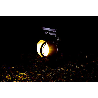 Berkley Jensen Changeable Color Solar Spotlight