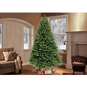 Puleo International 7.5' Davidson Fir Premier Christmas Tree
