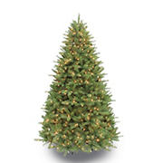 Puleo International 7.5' Pre-Lit Davidson Fir Premier Tree