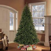 Puleo International 7' Franklin Fir Christmas Tree