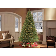 Puleo International 9' Pre-Lit Franklin Fir Christmas Tree