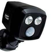 Night Hawk Security Light