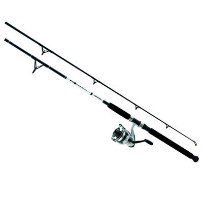 Daiwa D-Wave Saltwater 10' 2-Pc. Spinning Combo