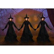 3-Pc. LED Witch Lawn Stakes Set