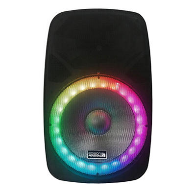 "Edison Professional EN-1600 15"" Bluetooth PA Speaker"