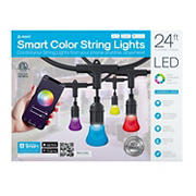 Atomi 24' Color Smart LED String Lights