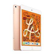 "Apple iPad Mini Wi-Fi 7.9"", 256GB - Gold"