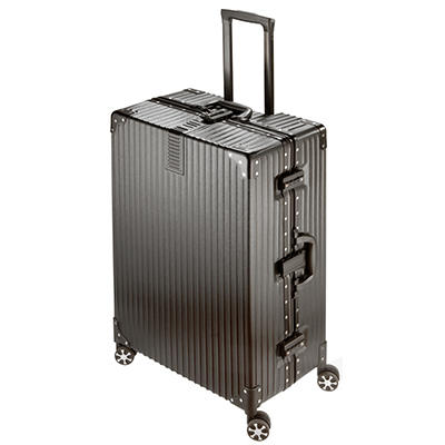 "National Travel Safe 29"" Spinner Suitcase - Black"