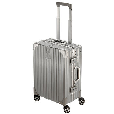 "National Travel Safe 20"" Spinner Suitcase - Silver"