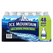 Ice Mountain Natural Spring Water, 48 pk./8 oz.