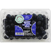 Jumbo Blueberries, 9.8 oz.