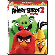 The Angry Birds Movie 2 (DVD)