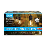 Feit Electric 36'  LED String Lights, 18 Socket
