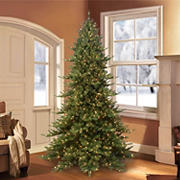 Puleo Royal Majestic 7.5' Fraser Fir Green Pre-Lit Tree with 600 ct. Clear Lights, Memory Tips, and Sure-Lit Pole