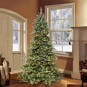 Puleo Royal Majestic 7.5' Douglas Fir Downswept Pre-Lit Tree with 800 ct. Clear Lights and Sure-Lit Pole