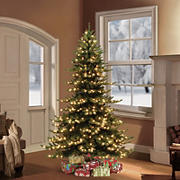 Puleo Royal Majestic 7.5' Spruce Green Pre-Lit Tree with 700 ct. Clear Lights