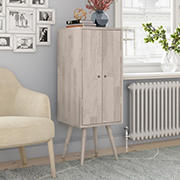 Cahill Vertical Wood Chest with Door - White Wash