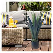 "38"" Agave UV Coated Plant with Pot"