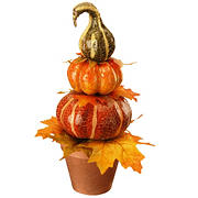 "National Tree 15"" Potted Pumpkin Decor"