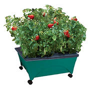 EMSCO Group Little Pickers Self Watering Raised Bed Children's Grow Box