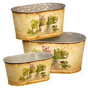 National Tree Company 3-Pc. Painted Decorative Pots