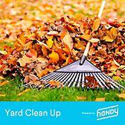 Handy Yard Cleanup, 5k-10k Sq. Ft.