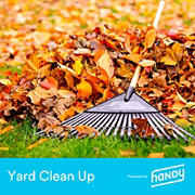 Handy Yard Cleanup, Up to 20k Sq. Ft.