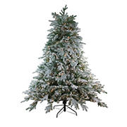 Northlight 7.5' Pre-Lit Full Frosted Butte Fir Artificial Christmas Tree - Clear Dura-Lit Lights