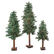 Northlight 3-Pc. Pre-Lit Woodland Alpine Artificial Christmas Trees - Clear Lights