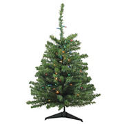 Northlight 3' Pre-Lit Medium Canadian Pine Artificial Christmas Tree - Multicolor Lights