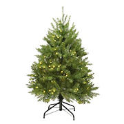 Northlight 4' Pre-Lit Full Northern Pine Artificial Christmas Tree - Warm Clear LED Lights