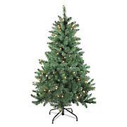 Northlight 4.5' Pre-lit Full Buffalo Fir Artificial Christmas Tree - Clear Lights