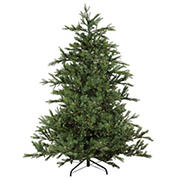 Northlight 6.5' Pre-Lit Full Oregon Noble Fir Artificial Christmas Tree - Warm White LED Lights