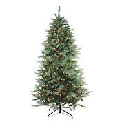 Northlight 6.5' Pre-Lit Washington Frasier Fir Artificial Christmas Tree - Clear Lights
