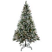 Northlight 6.5' Pre-Lit Medium Frosted Sierra Fir Artificial Christmas Tree - Clear Lights