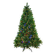 Northlight 6.5' Pre-Lit Medium Huron Pine Artificial Christmas Tree - Multicolor Lights