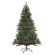 Northlight 6' Pre-Lit Medium Balsam Pine Artificial Christmas Tree - Clear Lights