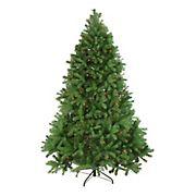 Northlight 6.5' Pre-Lit Noble Fir Full Artificial Christmas Tree - Multicolor Lights