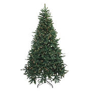 Northlight 7.5' Pre-Lit Full Northern Pine Artificial Christmas Tree - Clear Lights
