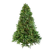 Northlight 7.5' Pre-Lit Noble Fir Full Artificial Christmas Tree - Clear Lights