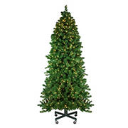 Northlight 7.5' Pre-Lit Slim Olympia Pine Artificial Christmas Tree - Warm White Lights