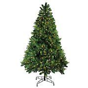Northlight 7.5' Pre-Lit Medium Sequoia Mixed Pine Artificial Christmas Tree - Warm White LED Lights