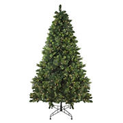 Northlight 7.5' Pre-Lit Medium Sequoia Mixed Pine Artificial Christmas Tree - Clear Lights