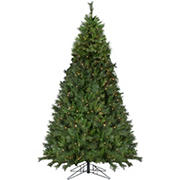 Northlight 9' Pre-Lit Medium Canyon Pine Artificial Christmas Tree - Clear Lights