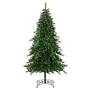Northlight 9' Pre-Lit Medium Eden Spruce Artificial Christmas Tree - Clear Lights